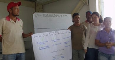 cdp tachira, organizacion