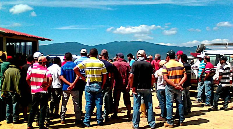 Solidaridad con campesinas y campesinos agredidos en Barinas y Yaracuy