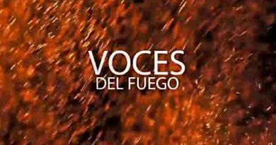 Presentan documental sobre organización frente a violencia política
