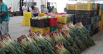 Centros de Acopio garantizan distribución de alimentos