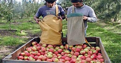 Llaman a productores frutihortícolas a actualizar o registrarse